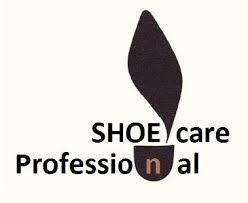 shoe care professional
